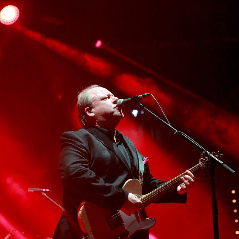 NinoSaetti.Pixies. 11