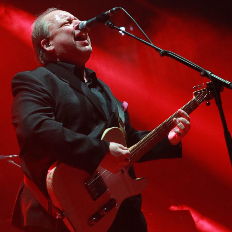 NinoSaetti.Pixies. 13