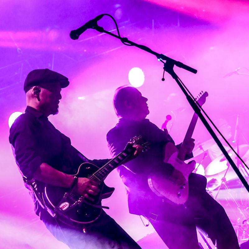 NinoSaetti.Pixies. 7