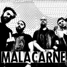 MALACARNE official 1