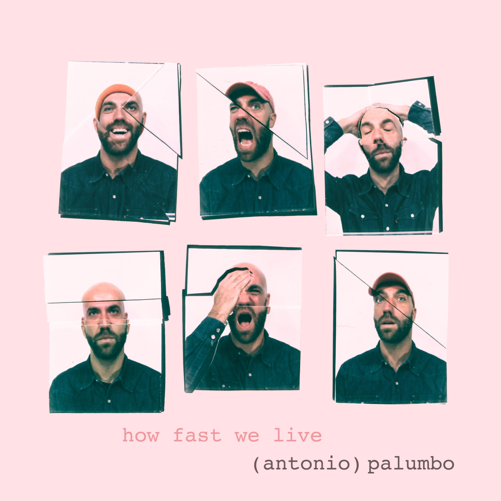 Palumbo HFWL cover