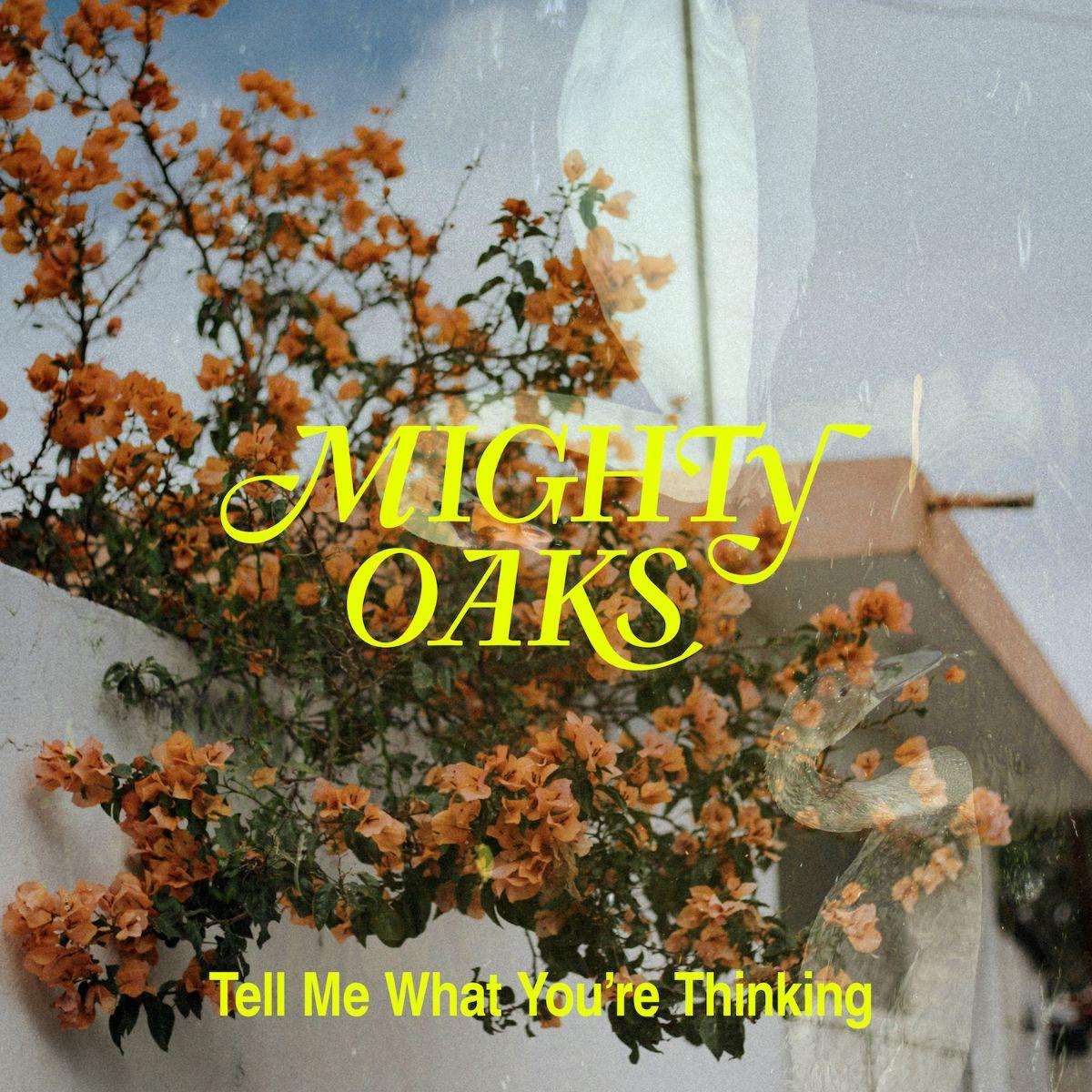 Mighty Oaks 1
