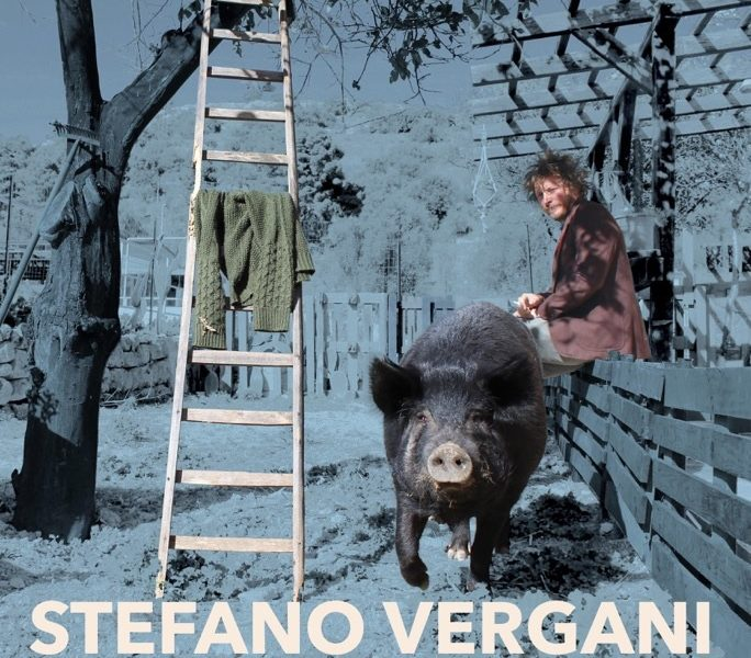 stefano vergani cover