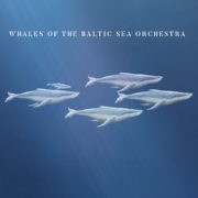 rossometile whales of the baltic sea orchestra