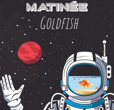 Goldfish cover