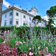 villa guicciardini