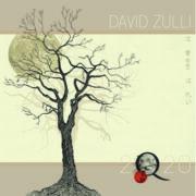 DavidZulli Cover 2Q20
