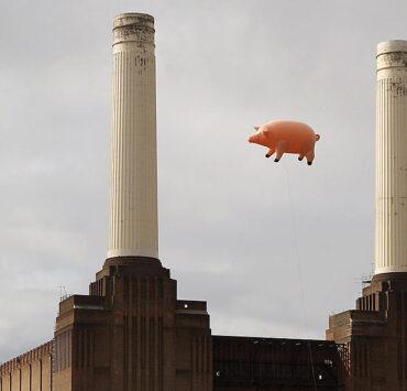 Pink Floyd Oli Scarff Algie